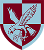 16th Air Assault